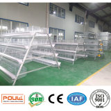 Chicken farm Battery Chicken Layer Cage of halls for Poultry farm