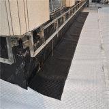 Alimentos compostos à prova de cavidade da placa de purga de HDPE/Folha de Drenagem de Plástico para Roof Garden