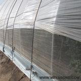 Meyabondの寿命7年ののアメリカの温室のための紫外線扱われた昆虫のネット