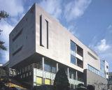 Доска целлюлозы автоклавированная цементом для светлого стального Prefab снабжения жилищем/модульной дома