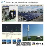 Minisystem des rasterfeld-10kw, integraler Wind, Solar, Diesel, Lebendmasse