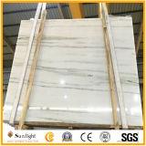 Heißer Verkaufs-königlicher Jaspis-Marmor/königliche beige Jade/weiße hölzerne Jade/weißer Jaspis-Marmor