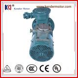 Um motor de C.A. de regulamento da fase da indução da velocidade da garantia do ano