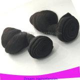Wellen-Menschenhaar-Extensions-natürliches brasilianisches Jungfrau-Haar lösen