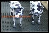 Циновка коровы, анти- циновка выскальзования, малая квадратная резиновый циновка