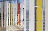 Цвет LG Corian акриловый твердый поверхностный белый украшая стену