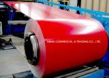 Le bobine d'acciaio galvanizzate preverniciate/colore della lamiera di acciaio PPGI hanno ricoperto la bobina d'acciaio galvanizzata preverniciata ricoperta colore d'acciaio di qualità Dx51d PPGI di perfezione della bobina