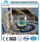 Acuario de acrílico cilíndrico/acuario de acrílico cilíndrico transparente grande cerca modificado para requisitos particulares para el proyecto de acrílico del acuario