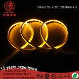 옥외 훈장을%s LED에 의하여 점화되는 안쪽 스페셜 LED 네온 밧줄 지구 빛
