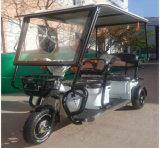 Motorino cinese del triciclo del motore di alta qualità 48V500W di vendita calda per gli adulti