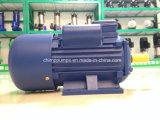 空気圧縮機のためのチンパンジーのYlシリーズAC電動機エンジン