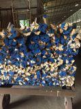 Festes Holz-Kronen-Gestaltung dekorativ