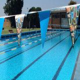Perfectionner les indicateurs durables de chaîne de caractères de modèle pour la décoration de piscine