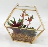 De kunstmatige Ingemaakte Succulente Installaties van Terrarium van het Frame van het Metaal van de Decoratie Gouden