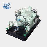 Alta temperatura de alta presión Double-Shell Fdsr&Bomba multietapa