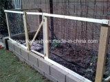 Наговор. Плетение провода /Galvanized плетения провода /Chicken плетения провода с конкурентоспособной ценой