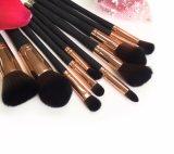 La fábrica del maquillaje patentó cepillos del maquillaje 10PCS de la maneta plástica