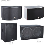 10 polegadas 250W Tweeter Bass Indoor Show Karaoke Speaker (RS-10)