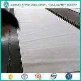 Polyester de vêtement de machine de papier formant la courroie/feutre plus sec de tissu/presse