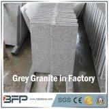 Het opgepoetste Grijze Graniet van de Steen voor Plak/Tegel/Treden/Countertop/de Bovenkant van de Ijdelheid