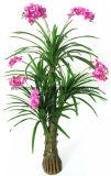 La Tabella artificiale Hx0101037 fiorisce il centro