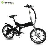 2016 신식 뚱뚱한 타이어 전기 자전거