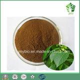 Production directe en usine Qualité supérieure de Fucoidan, Extrait d'algues marron