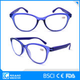 Keurden de Optische Frames van de Glazen van de Lezing van het oogglas voor Dame Ce FDA goed