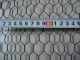 Reticolato esagonale della rete metallica con l'acciaio a basso tenore di carbonio