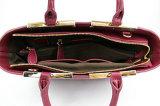 Designs modernos de sacos de escritório de forma quotidiana das mulheres