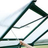 Pilz-Gewächshaus-Gewächshaus-Installationssatz-Aluminiumrahmen-Gewächshaus-Glas-Gewächshaus