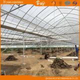 Invernadero de la película del Multi-Palmo del arco para plantar vehículos y las frutas
