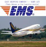 Consolidar el servicio logístico de alta velocidad de China a Dubai