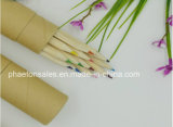 Length Wooden Color Pencil in Kraft Paper Box