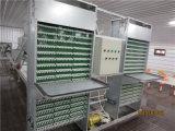 Het Huis van /Chicken van het Huis van het gevogelte met de Volledige Apparatuur van het Gevogelte van de Reeks Automatische