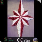 8星の休日の照明LED 3D花輪のモチーフライトモールの装飾