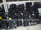 Brand New R134A Zel compresseur de réfrigération fabriqués en Chine