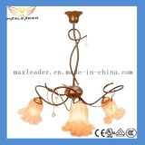 Hot Sale Fancy Lighting Lamp CE, VDE, RoHS, UL Certification (S-MX1218024)