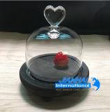 Опарник Cloche колокола светильника светлый стеклянный с конструкцией верхней части красотки