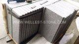 Granito naturale delle mattonelle del granito G603 che pavimenta le mattonelle della pietra per cimasa del raggruppamento delle mattonelle della copertura del pavimento non tappezzato
