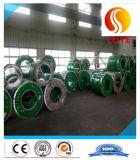 Tôle / bobine galvanisée en acier inoxydable 310S 309