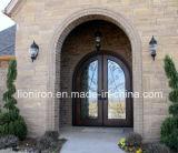 Portas da rua clássicas do dobro do ferro feito do estilo L-D046