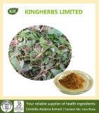 Asiaticoside 40%/Centella asiatica Auszug-Gesamttriterpene 40%