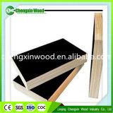 Panneau de coffrage 18mm Brown Frame / Hardwood Core Marine Plywood