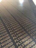 Colagem preta da prova de Whater da madeira compensada da face da película/da madeira compensada película de Brown em 18mm
