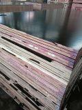 A película da primeira classe enfrentou a madeira compensada de Huabao para Shuttering/concreto