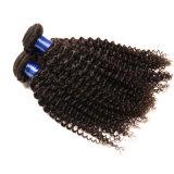 [كرلي هير] [برزيلين] 3 حزمات [300غ] [8ا] [أونبروسسّد] 100% [هومن هير] [برزيلين] عذراء شعر موجة عميق [برزيلين] شعر نسيج حزمات