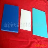 Scheda /Sheet della gomma piuma del PVC