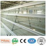 4 rangées un type cage de couche de poulet