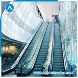 Precio automático comercial de la escalera móvil del surtidor de China
